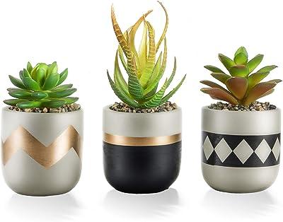 Artificial Succulents Fingered Plants Flowers Desktop Mini Plants Ornament