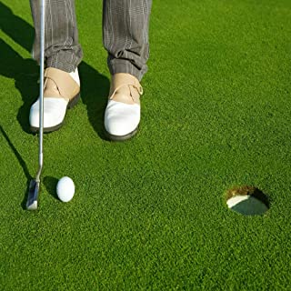 Best putting green grass seed sale Reviews