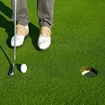Best golf course green lawn seed Reviews