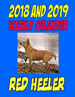 2018 and 2019 Weekly Calendar Red Heeler: Two Years dog calendar, notes, and personal info., and more