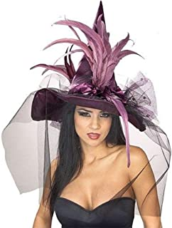 Costume Co. Women's Witch Hat with Feathers and Veil Costume
