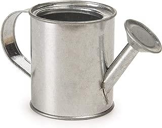 Darice Miniature Watering Can: Metal, 2.25 inches