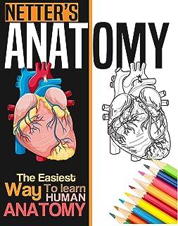 Netter's Anatomy Coloring Book: Neuroanatomy Human Body Workbook
