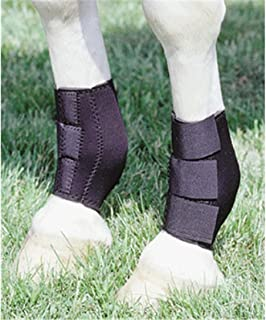 Neoprene Ankle Boots HIND LEGS Boots Leg Protection Care Horse Barrel Racing Reining Training
