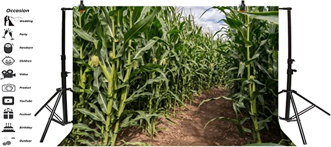 Yeele 7x5ft Green Corn Field Maze Backdrop Rural Farm Crop Plant Cultivation Natural Scenery Photography Background Countryside Farmland Photo Booth Shoot Studio Props