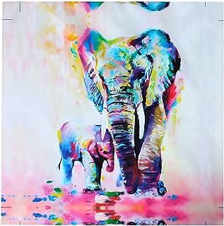 Heyuni. 40X40cm Colorful Elephant Oil Painting Print on Canvas Wall Art for Room Decor Frameless