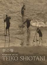 夢の翳 塩谷定好の写真 1899−1988