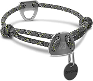 Best day collar uk Reviews