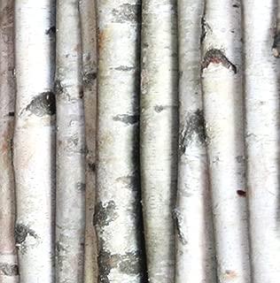 Wilson Enterprises Decorative Birch Poles 4ft (4 Poles 1 1/2