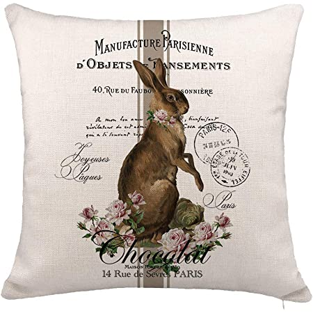 Farm Rabbit Easter Bunny Feed Throw Pillow Cover Sofa Couch Car Bed Cushion Case