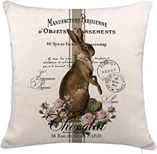 YOENYY Rabbit Easter Throw Pillow Cover Cushion Case for Sofa Couch Vintage French Shabby Chic Bunny Home Decor Cotton Linen 18