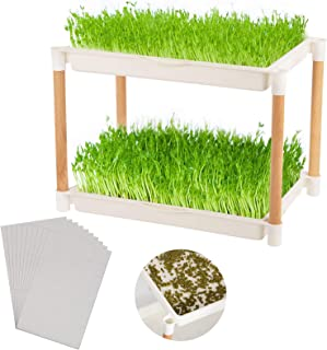 Double Layers Seed Sprout Trays with Wood Frame- Food Grade Plastic Seed Sprouter with 10pcs Germination Paper Wheatgrass ...