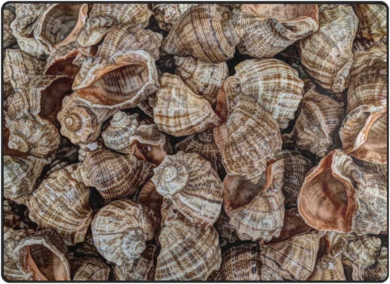 FAJRO Beach Shell Conch Rugs for entryway Doormat Area Rug Multipattern Door Mat shoes Scraper Home Dec Anti-Slip Indoor Outdoor