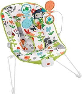 Fisher-Price Baby's Bouncer – baby bouncing chair for soothing and play for newborns and infants