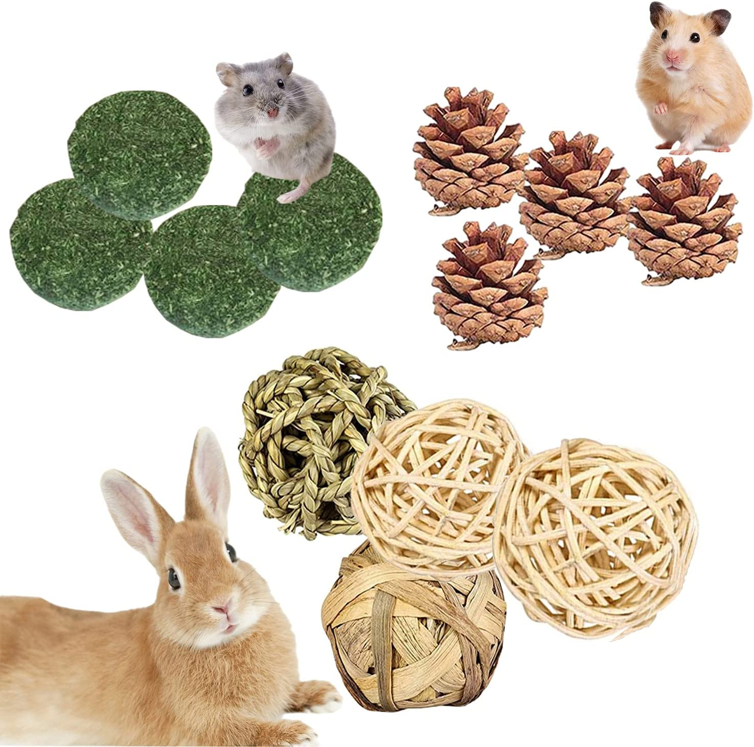 Buy QHZAHNG Bunny Chew Toys, 20pcs Hamster Chew Toys,Natural ...