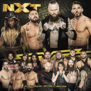 2019 NXT 2019 Wall Calendar, MMA, Boxing & Wrestling by ACCO Brands