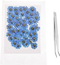 EXCEART 60 sztuk prawdziwych, naturalnych, suszonych kwiatów, suszone aplikacje Daisy Applique z pęsetą, płatki kwiatów do...