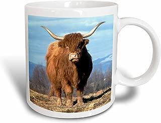 3dRose USA Oregon Multnomah County Highland Cow US38 BJA0154 Jaynes Gallery Ceramic Mug, 15-Ounce