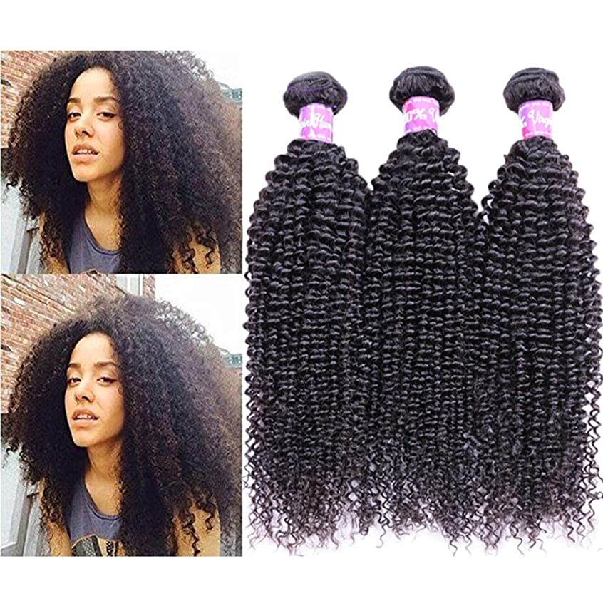 堤防医師とても女性の髪織り未処理のブラジルの深い巻き毛の束本物の人間の髪の束バージンブラジルの髪の束