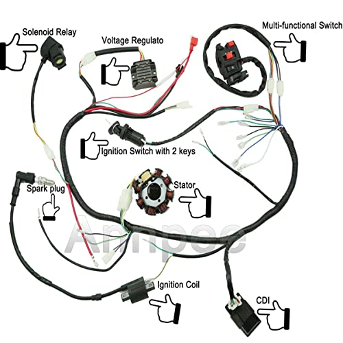 110cc Pit Bike Wiring Diagram Kick Start