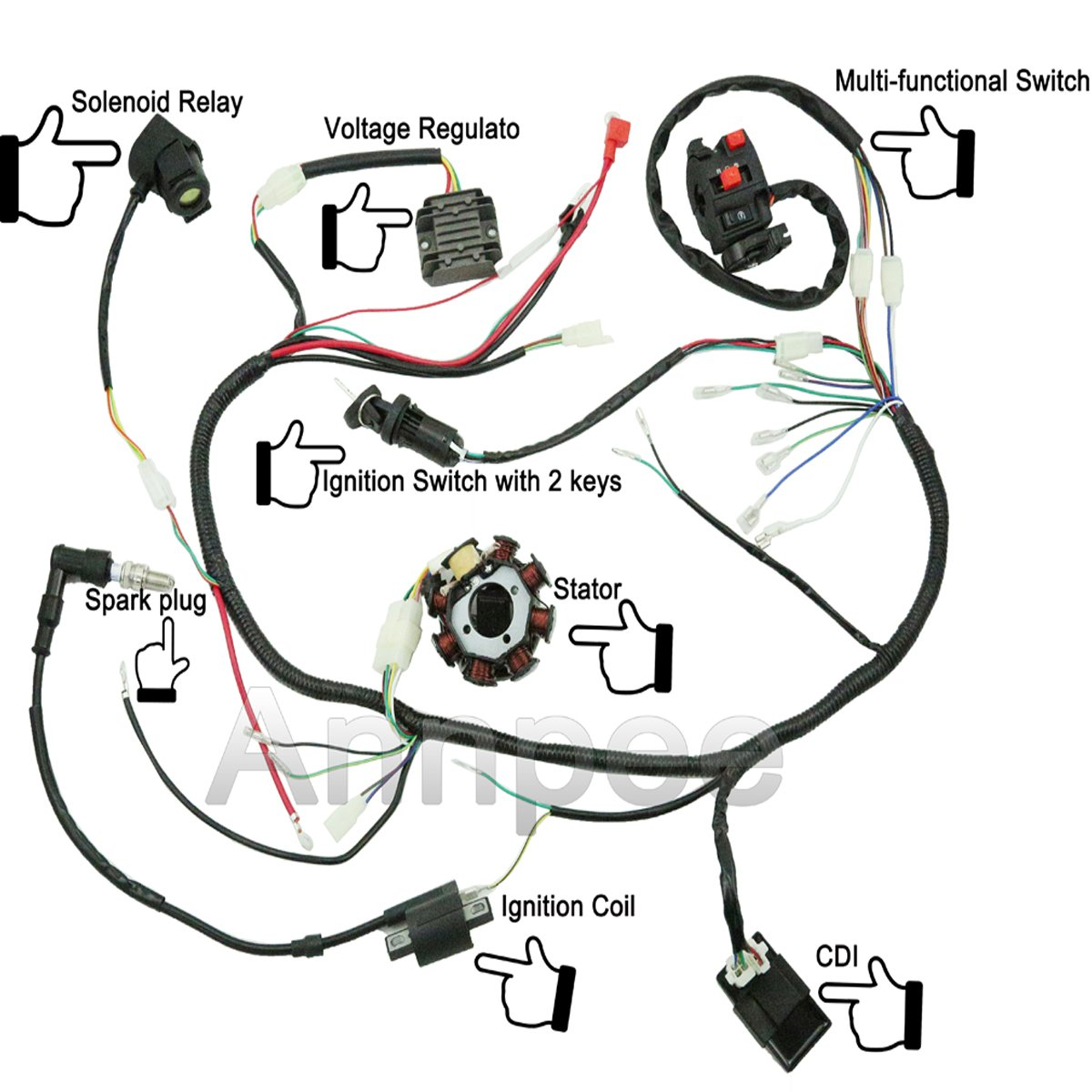Hammerhead Twister 250cc Wiring Harness - Wiring Diagrams Show on