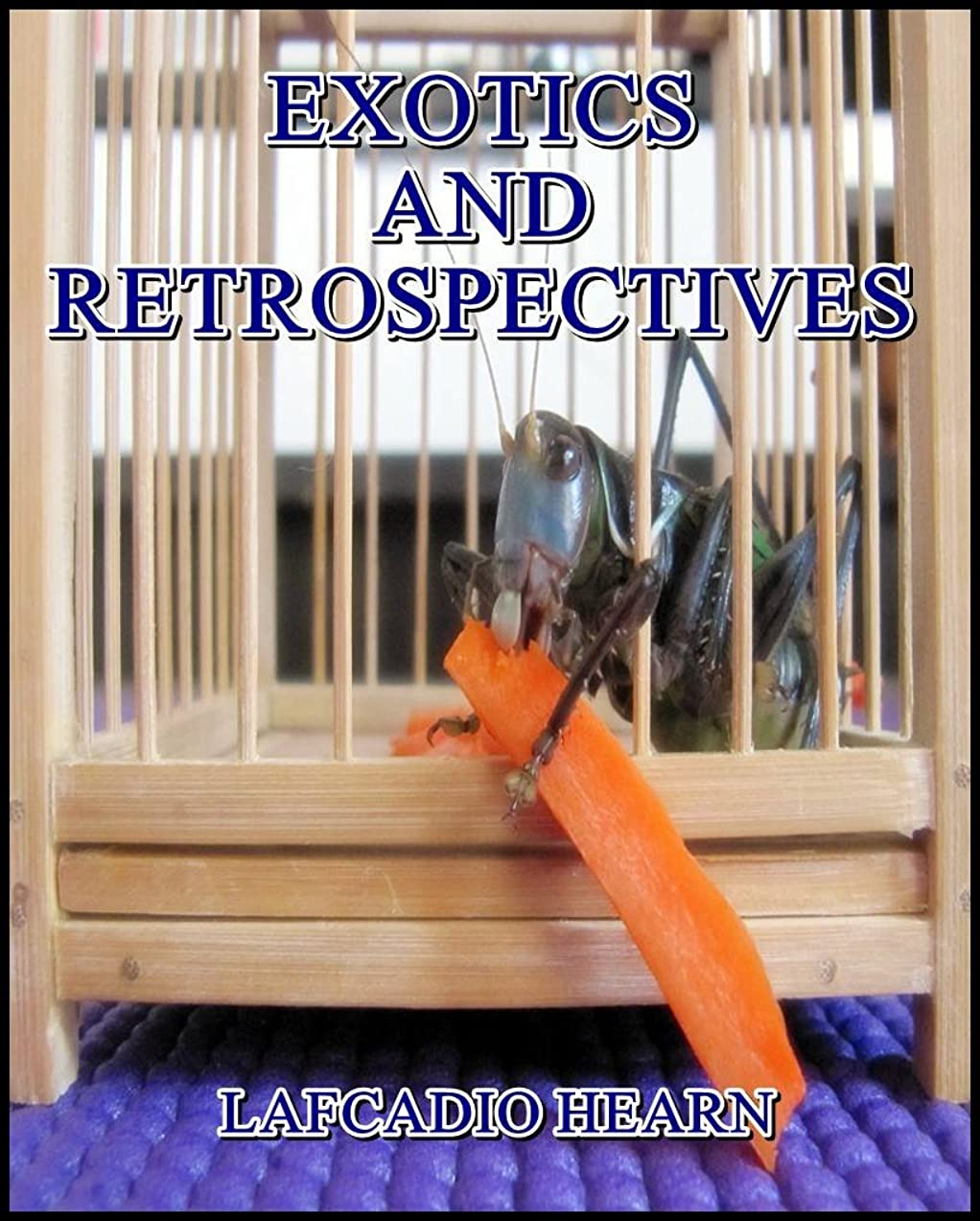 圧倒的ヒギンズ未接続Exotics and Retrospectives (English Edition)