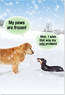 12 'My Paws Are Frozen' Boxed Blank Christmas Cards with Envelopes 4.63 x 6.75 inch, Happy Holiday Cards, Funny Xmas Stationery Greeting for Golden Retriever, Dog, Animal Lover B5953K