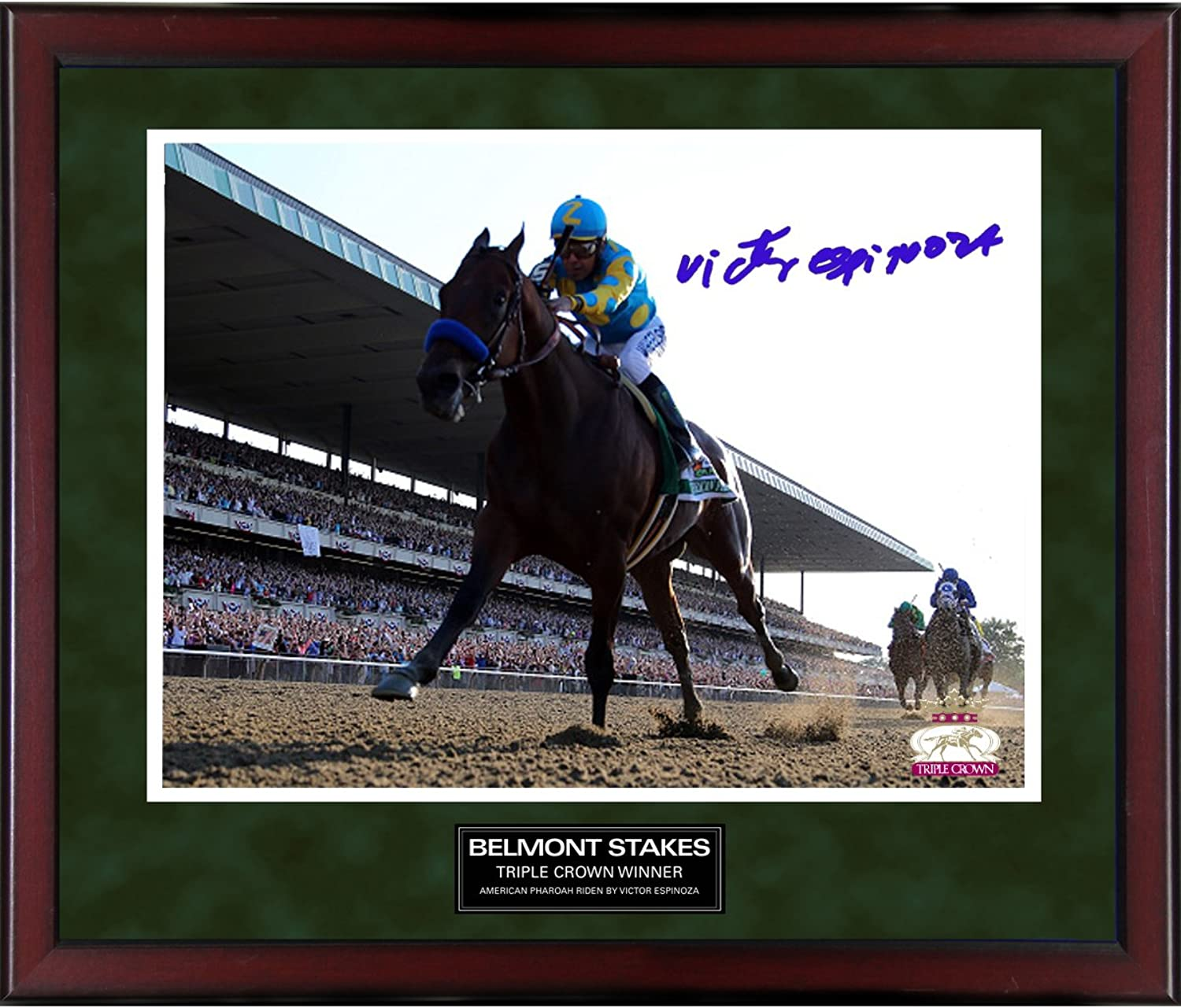 Steiner Sports Victor Espinoza Winning Belmont Stakes Signed Framed Photo, 16  x 20