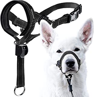 GoodBoy Dog Head Halter with Safety Strap - Stops Heavy Pulling On The Leash - Padded Headcollar for Small Medium and Larg...
