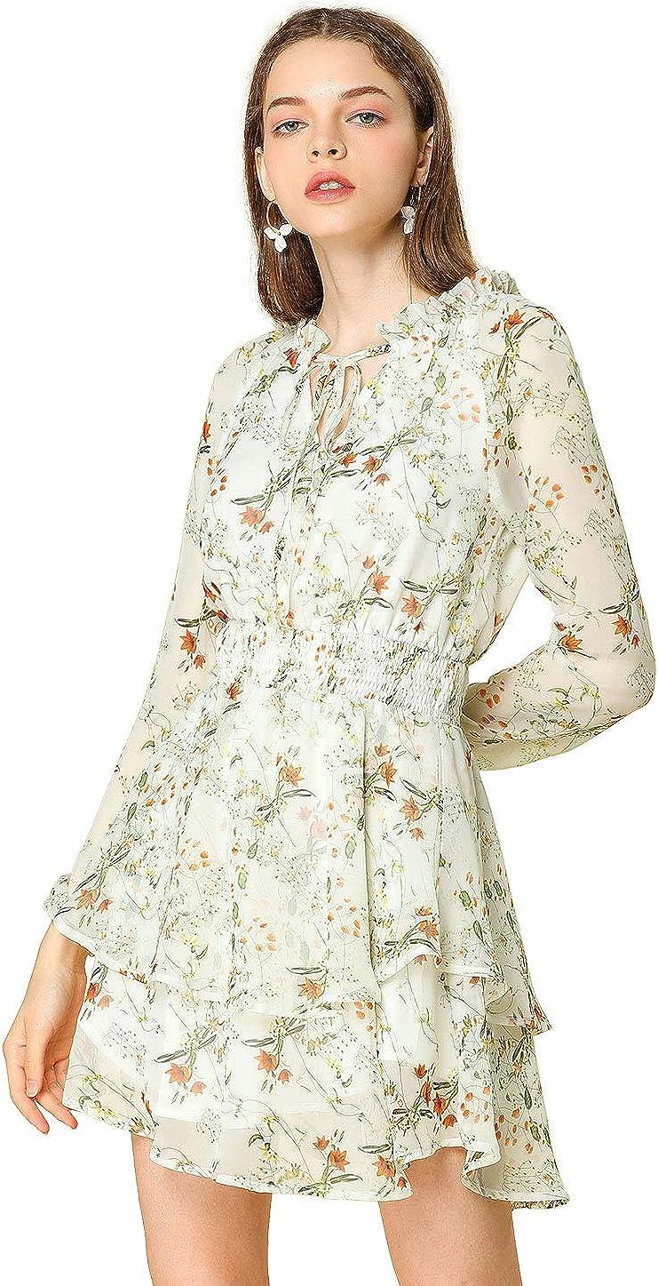 Allegra K Women's Floral Smocked Waist Tie Neck Layered Chiffon Mini Dress