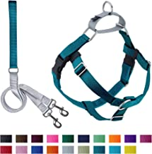 2 Hounds Design Freedom No-Pull Dog Harness with Leash | X-Small - XX-Large Adjustable Pet Harness for Small and Large Breeds | Made in USA (Medium, Teal)