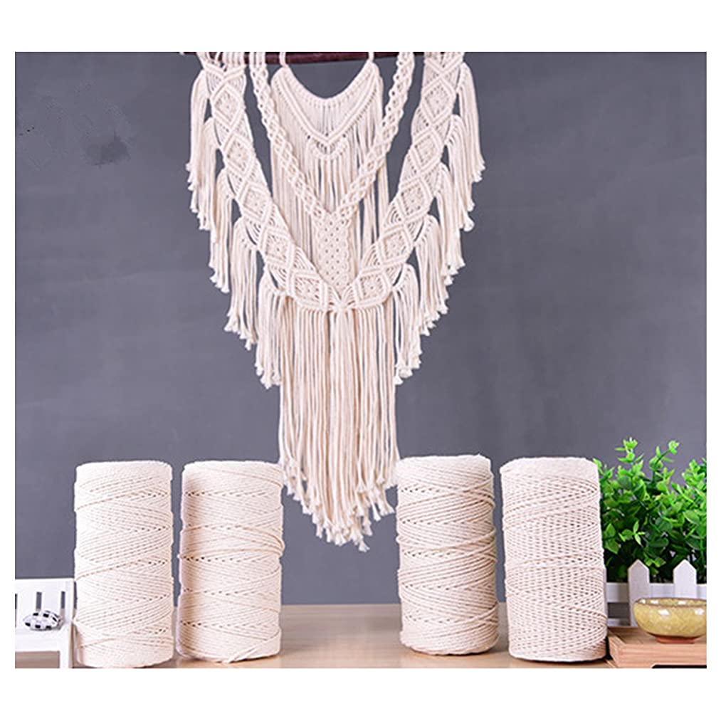 zhengjun Tapestry Braid Rope Handmade DIY Decorative Rope 3 Strand 100% Cotton Twisted Cord Rope Craft Macrame Artisan String
