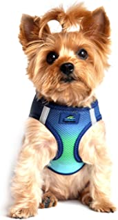 Best ombre dog harness Reviews