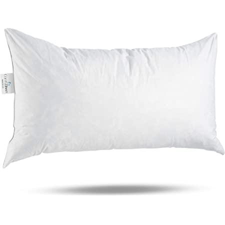 Reynosohomedecor 12x27 Inch Rectangular Throw Pillow Insert Form Home Kitchen