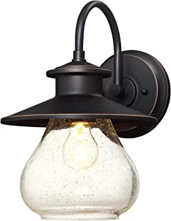 Westinghouse Lighting 6313500 Delmont One-Light Outdoor Wall Fixture, Oil Rubbed Bronze Finish with Highlights with Clear Seeded Glass,