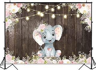 Best 1st birthday pink elephant Reviews
