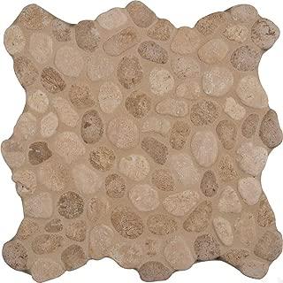 Travertine Blend Pebbles 10mm,10.92 SFT/Case(12 Pcs)
