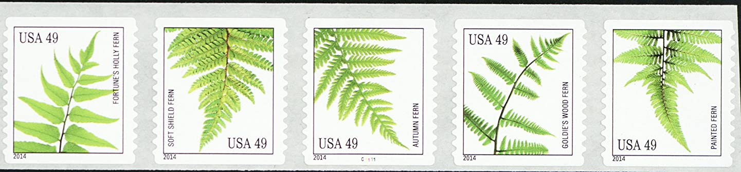 2014 49 Cent Ferns Strip of Five Coil Postage Stamps Scott 4848-52 By USPS