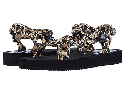 Steve Madden Henley-R Sport Sandal (Leopard) Women
