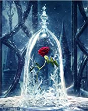 ABEUTY DIY Paint by Numbers for Adults Beginner - Roses in Glass Dome, Beauty and the Beast, Enchanted Rose 16x20 inches Number Painting Anti Stress Toys (Wooden Framed)