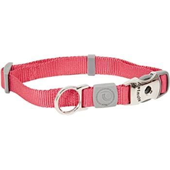 Petmate 10210 Pet Supplies Dog Collars