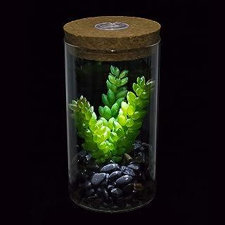 Plantas Suculentas Artificiales en Macetas,Aromaterapia Dise