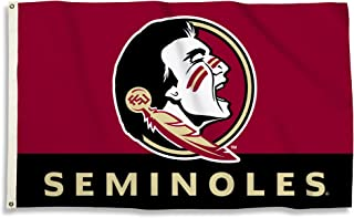 BSI NCAA Florida State Seminoles Flag with Grommets, 3' x 5', Multicolor