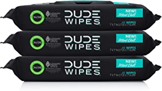 DUDE Wipes Flushable Wet Wipes Dispenser, Mint Chill, 48 Count (Pack of 3) Scented Wet..