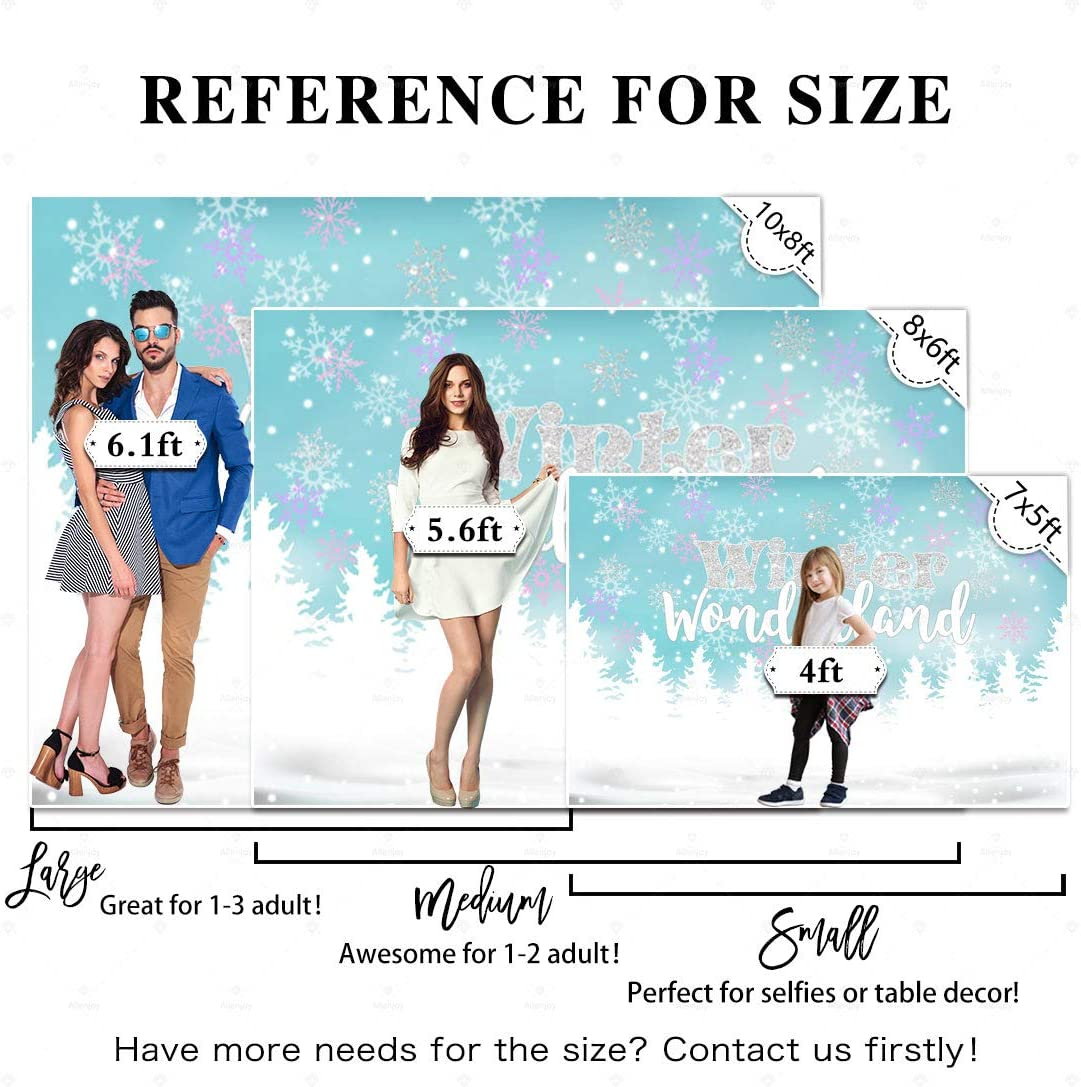 Allenjoy 10x8ft Winter Wonderland Backdrop Blue Its Cold Outside Boy Girl Prince 1st Birthday Party Baby Shower Sliver Snowflake Sparkle Glitter Banner Supplies Decorations Background Props