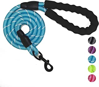 VLDCO 10 FT Strong Dog Leash Extra Heavy Duty Rock Climbing Rope Comfortable Padded Handle Highly Reflective Threads for Small Medium Large Dogs, 1/2 inch Diameter