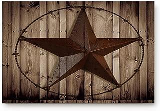 texas star door