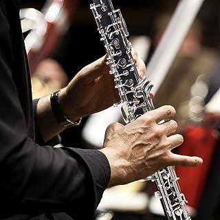 Instrument à vent professionnel pour les amateurs de hautbois
