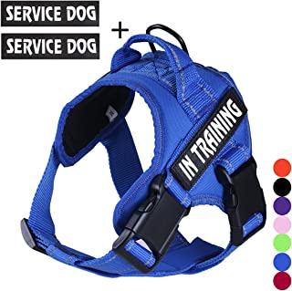 FML PET No Pull Service Dog in Training Harness with 3M Reflective Straps, Breathable and Adjustable Pet Vest with Handle, Easy Control Dog Harness for Waliking Training Running, (7 Color,XS-XXL)