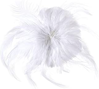 ostrich feather bustle